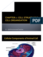 2.1 Cell Structure & Function