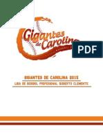 Presentación Propuesta Gigantes de Carolina 2015