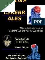 tumorescerebrales-130705103609-phpapp02