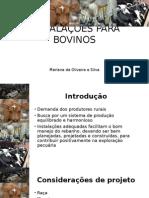 Instalações Para Bovinos