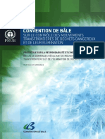 BaselConventionText f