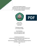 Status pasien+ Makalah CVA