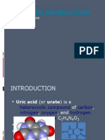Uric Acid Production