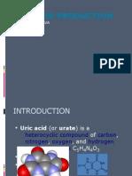 Uric Acid Production