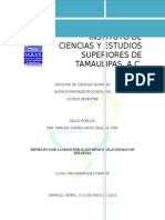 INFLUENZA SALUD PÚBLICA.docx