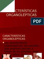 Caracteristicas Organolepticas CARNES