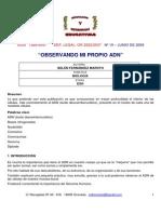 Belen Fernandez 1