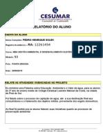 Relatorio_final PEDRO.doc