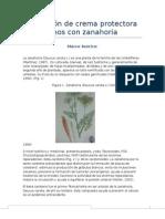 Producción de Crema Protectora Para Manos Con Zanahoria