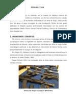 INTRODUCCIÓN DE HERIDAS DE PROYECTILES