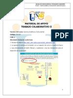 Apoyo_del_curso_Trabajo_col_2_2015-II espesifica.pdf