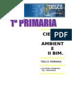 CIENC Y AMBT  II BIM