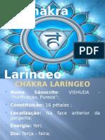 chakralarngeo-130807081438-phpapp01