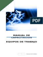Manual Del Participante Equipos de Trabajo