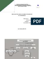 Mapa Conceptual Sobre Las Formas de Organización de los aprendizajes