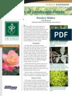 Diseases of Landscape Plants
