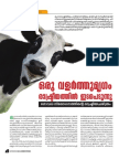History of Beef Ban Politics - By Devadas VM