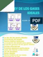 Leydelosgasesideales1 150304142103 Conversion Gate01