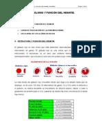 Tema Vi. Metabolismo y Función Del Hematíe. Hemólisis