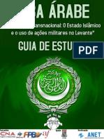 Terrorismo Transnacional