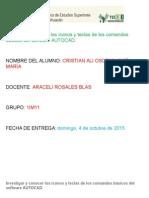 Investigar y conocer los iconos y teclas de los comandos básicos del software AUTOCAD.docx