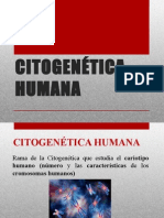 Clase de Citogenética Humana