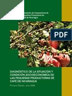 Diagnostico_productoras de cafe en Nicaragua.pdf