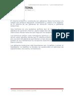 Sistema Endocrino Gonzalo 1