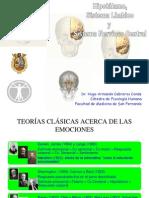 _T8-Hipotálamo,.pdf
