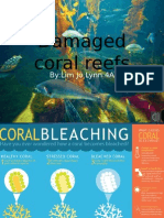 Damaged Coral Reefs