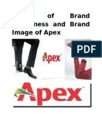 Brand Management of Apex Shoe