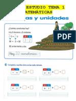 ficha-estudio-tema-1-2N-MAT.pdf