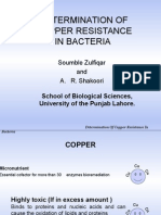 Determination of Copper Resistance in Bacteria