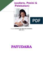 3P (Payudara, Posisi & Pelekatan)