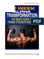 12 Week Alpha Transformation