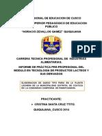 Informe de Practica de Lacteos