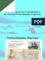 Adaptaciones de Los Invertebrados a Las Grandes Profundidades Oceánicas