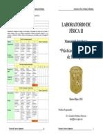 Manual FII Vi