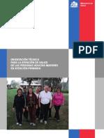 Orientacion Tecnica Para La Atencion en Salud de Las Personas Adultas Mayores en AP MINSAL Chile 2014