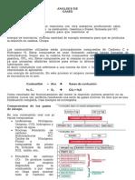 ANALISIS+DE+GASES