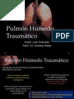 Pulmón Húmedo Traumático