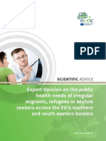 1Expert Opinion Irregular Migrants Public Health Needs Sept 2015