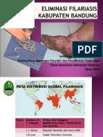 Filariasis Kab Bdg 10-01-2010(Dr. Dedi)