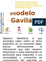 ModeloGavilan_CTyC