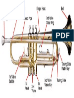 Parts of the Trumpet