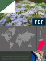 Boletin Nro.1 Desierto Florido 2015 - Parque Nacional Pan de Azúcar