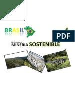 Brasil Caso de Minera Responsable Biotolima Final 1 728