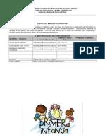 Informe Observación Insitu
