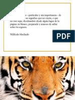 microcuento-1.ppt