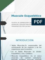 Exposicion de Musculo Esqueletico